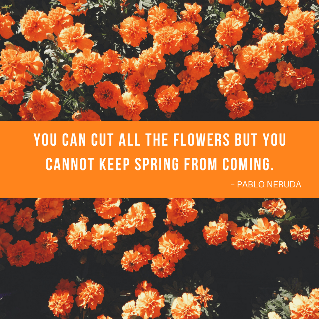 17 spring quotes to inspire you tck publishing