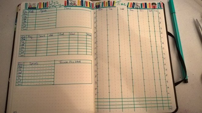 keep track of weekly progress author Rosa Swann