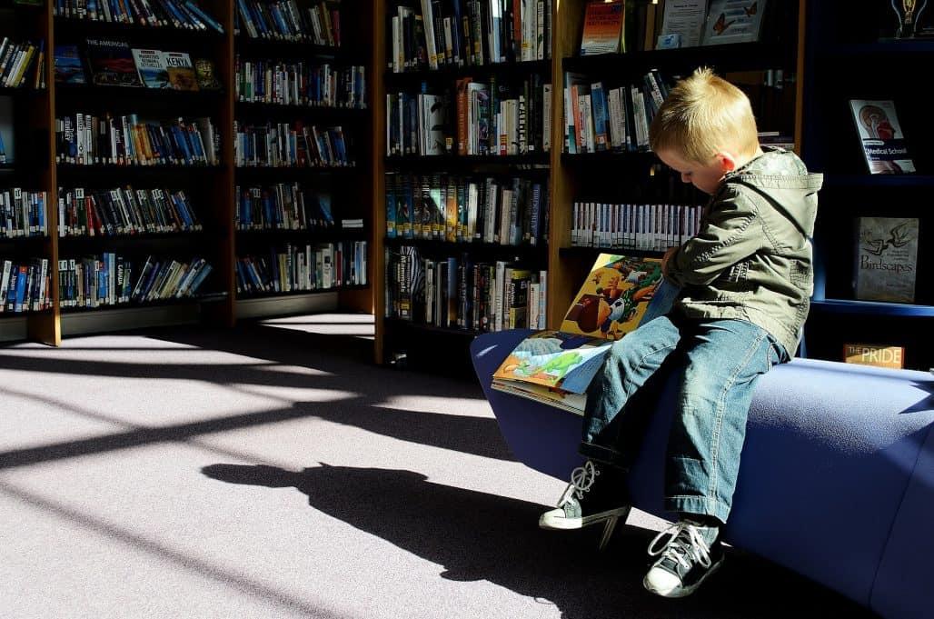 juvenile literature kidlit