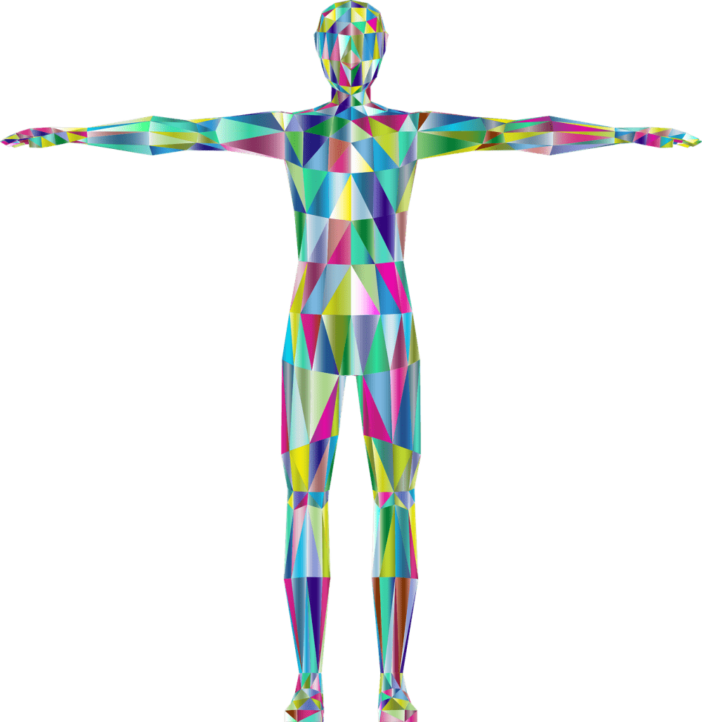 3D colorful diagram of the human body and how to use the body to remember more
