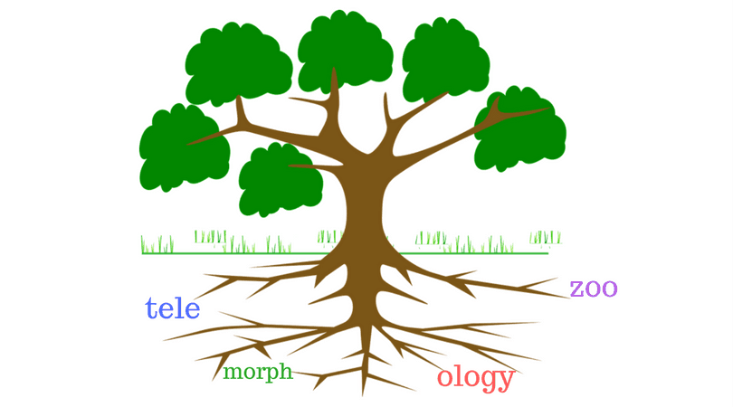 how to recognize and use root words