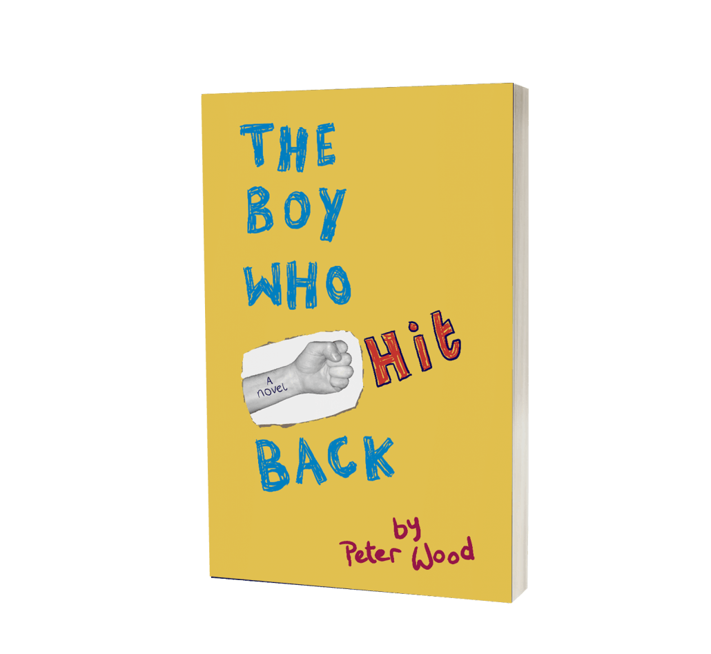 The Boy Who Hit Back cover image
