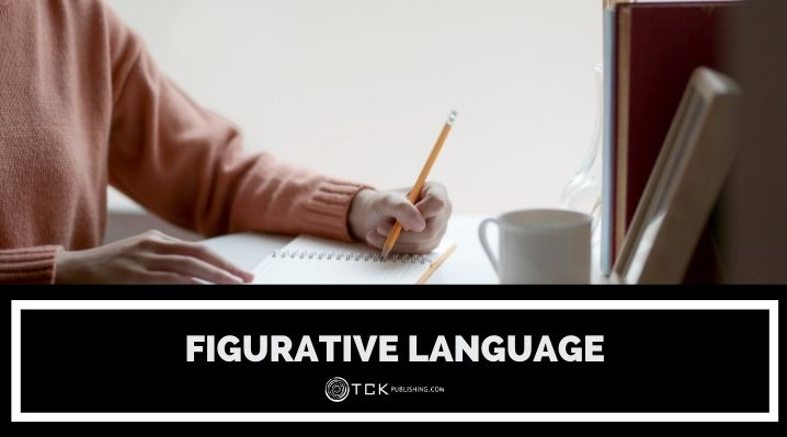 figurative language blog post image