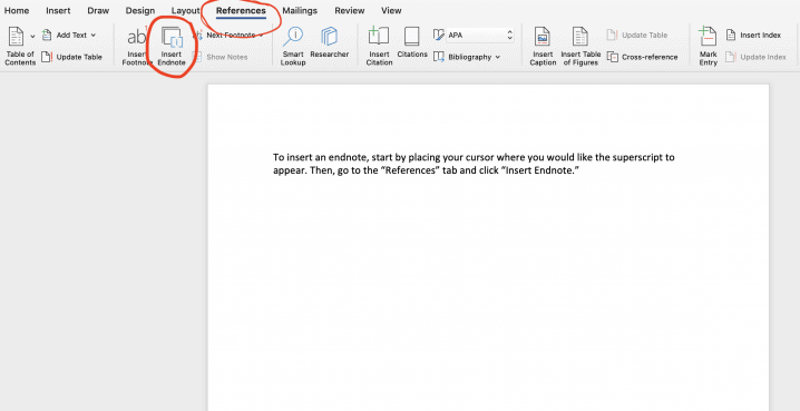 how to insert endnotes in word image
