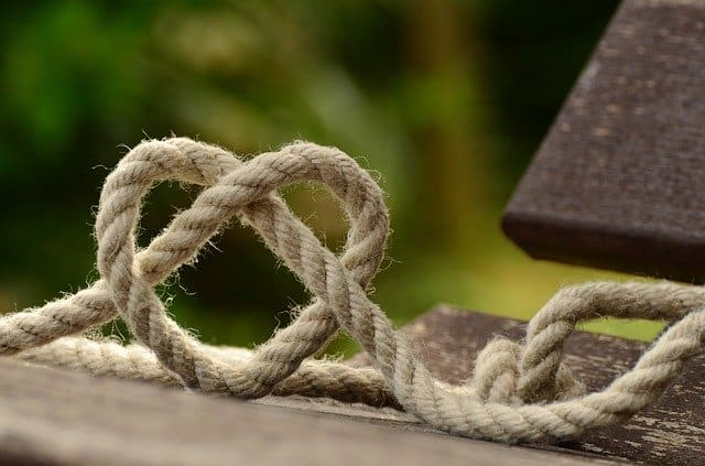 tie up loose ends in a series image