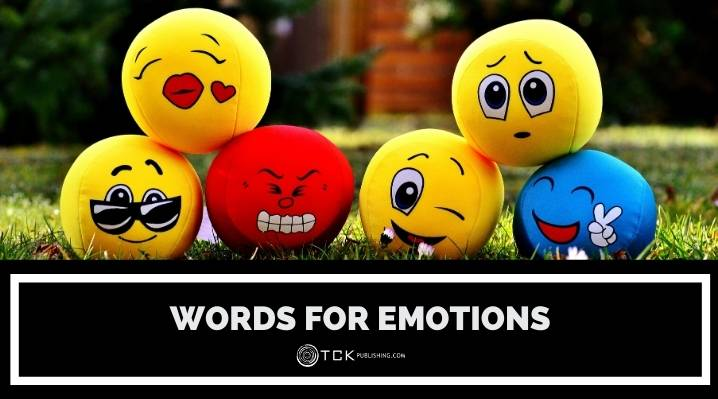 Words for Emotions: How to Describe Feelings in Prose